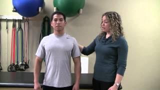 Posterior Shoulder Rolls Exercise