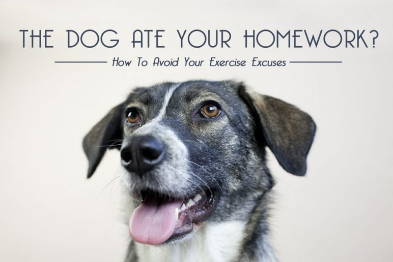Dog Ate Your Homework? How To Avoid Your Exercise Excuses