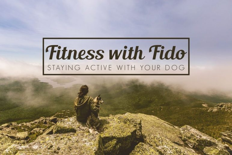 Fitness with Fido: Staying Active With Your Dog