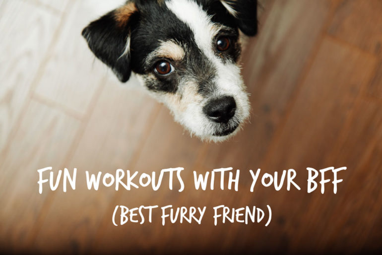 Fun Workouts With Your Bff  Best Furry Friend