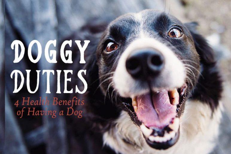 Doggy Duties: 4 Health Benefits of Having a Dog