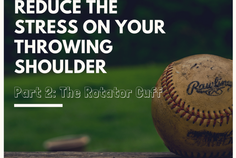 Blog part 2 FI-Coury & Buehler Physical Therapy