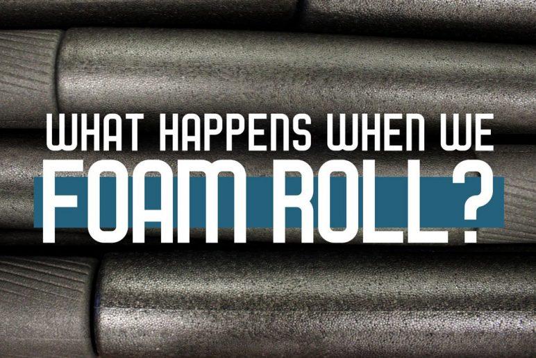 What Happens When We Foam Roll?