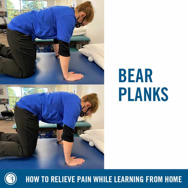 bearplanks
